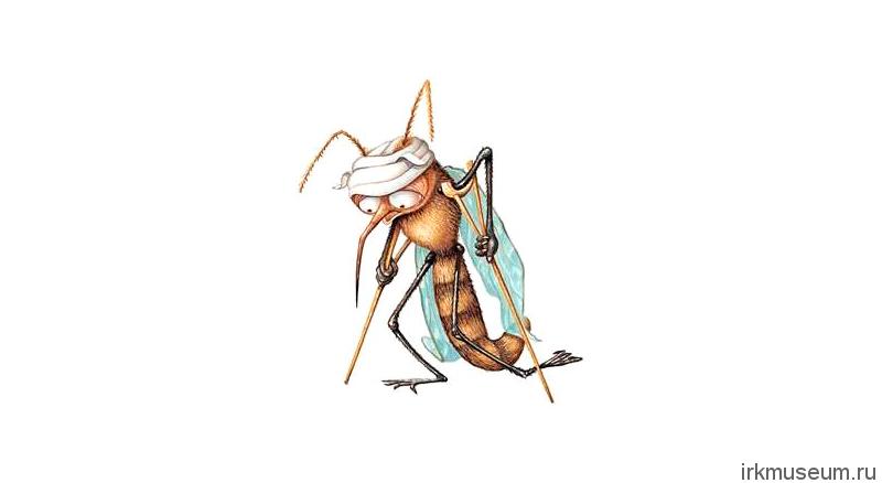 комар1